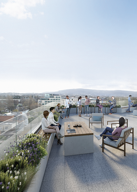 Socialising on the south-facing roof terrace at 35 Shelbourne Road